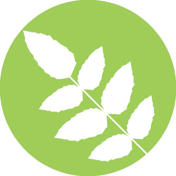 Ruscombe-fencing-paving-Chineham-landscape-gardener icon