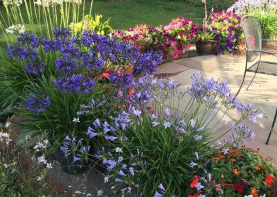 Windsor-gardening-services-Maidenhead-garden-design